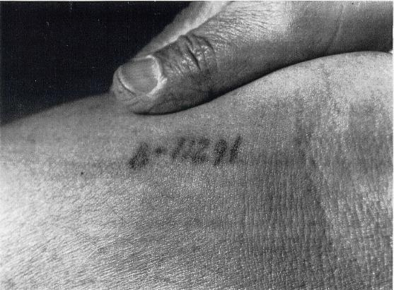 Auschwitz Tattoo. Number of Henry Oertelt B11291