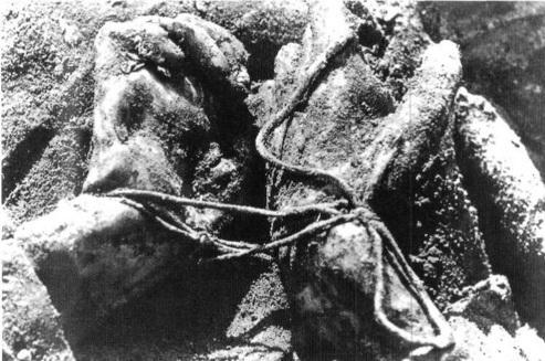 Munich massacre aftermath