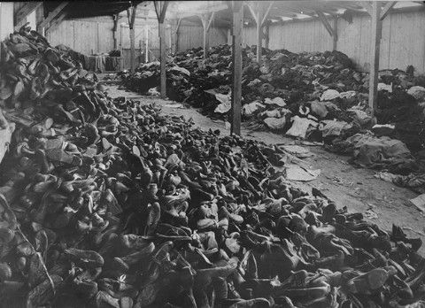 photo essay on the holocaust Free essay on the holocaust available totally free at echeatcom, the largest free essay community.