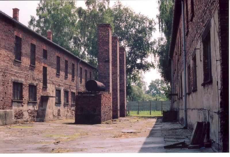Brilliant Auschwitz Today 800 x 546 · 99 kB · jpeg