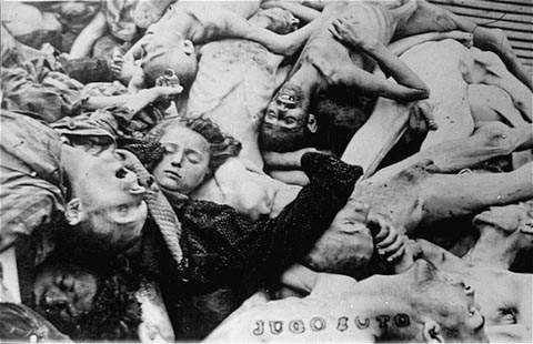 http://www.holocaustresearchproject.org/othercamps/images/Dachaudeath.jpg