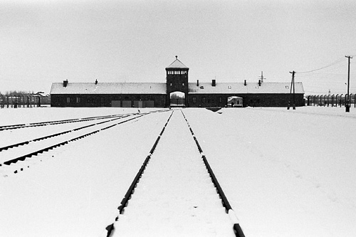 an analysis of systematic oppression and mass murder of jews by the nazis Stage 3: concentration campsstage 3: concentration camps essential to nazi's systematic oppression and eventual massessential to nazi's systematic oppression and eventual mass murder of enemies of nazi germany (jews, communists,murder of enemies of nazi germany (jews, communists,.