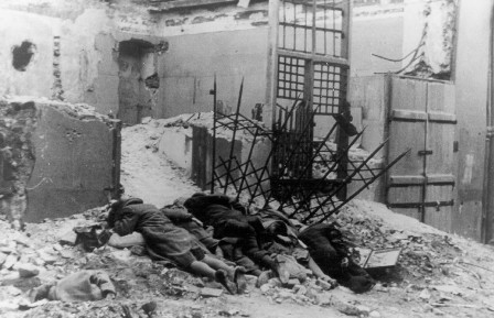the small victories of the failed rebellions during the holocaust 10 havens during the holocaust april 8, 2018 food 10 the falkland islands consist of two large and many small islands in the south atlantic greek concern over the situation in crete, where the greek population was still under ottoman control in late 1896 a rebellion broke out.