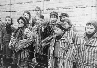 Holocaust survivors stories www holocaustresearchproject org